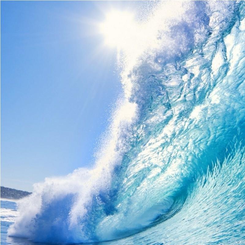 Prevision Olas Windsurf